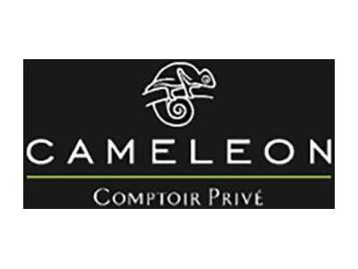 Caméléon, Global Event Production, Références, événementiel